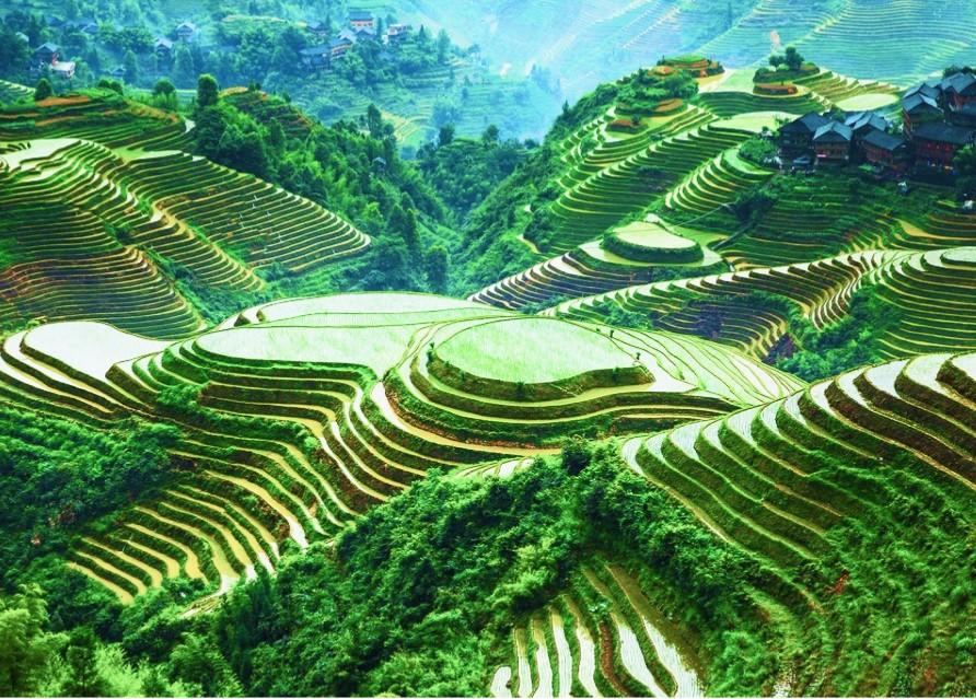 Рисовые террасы,хребет Дракона и переезд в древний город  Фэнхуан